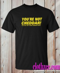 You're Not Cheddar Trending T Shirt